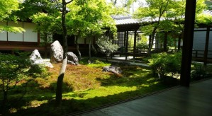 A Paz Zen nos Jardins de Kyoto