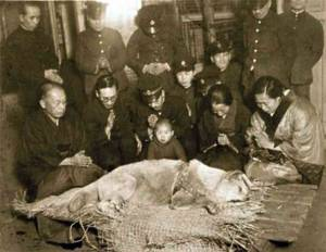death-of-hachiko