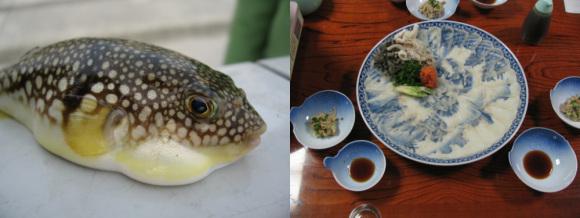 2013-11-17-final-fugu