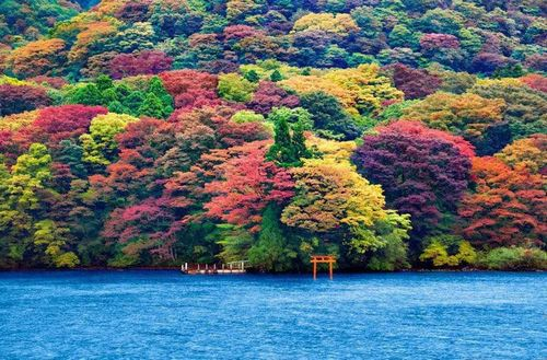 Hakone Lake 2 (1)