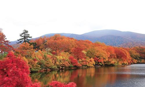Outono em Akita