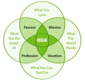 ikigai-blog-post2