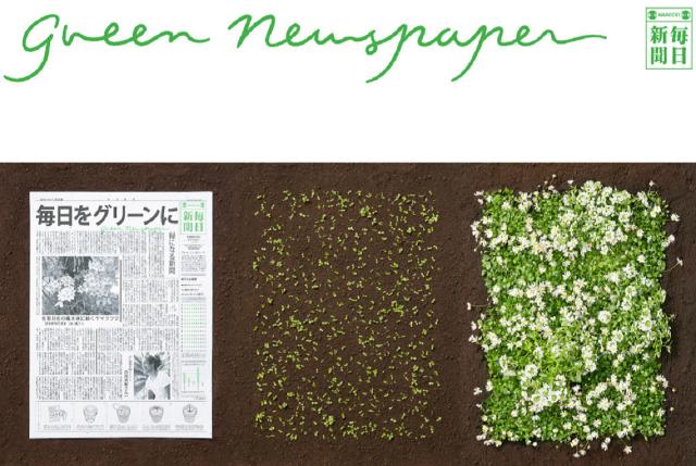 giornale-carta-semi