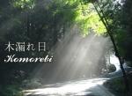 Komorebi 1 (1)